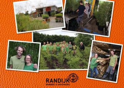 Fotografie Randijk Bamboe en Hoveniers